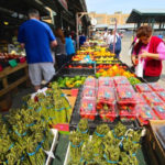 The_Landings_CityMarket_2